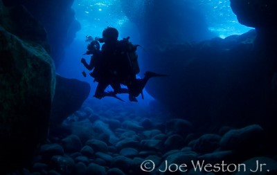 Jack's Diving Locker Specialty Courses